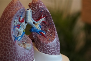 New Tool Could Help with COPD Patient Experience Evaluation
